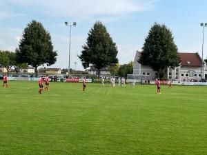 Naarn - Katsdorf (8)